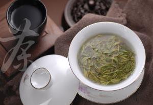 广东9地市组团参加茶博会