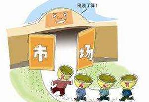 广东将完善市场退出机制