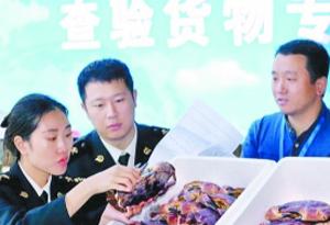 广州海关企业通关费用下降20%