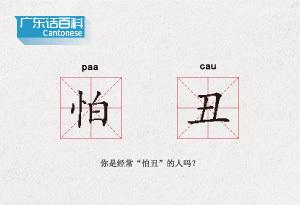 """广东话百科:怕丑(你是经常""""怕丑""""的人吗?)"""