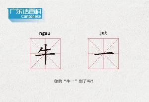 """广东话百科:牛一(你的""""牛一""""到了吗?)"""